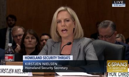 DHS Secretary Nielsen Makes Laughable Claim That Agency Does Not Detain Children